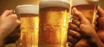 Cervecería del Palacio - Colonia